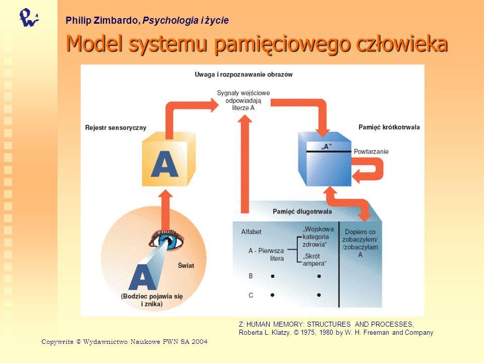 Model systemu pamięciowego człowieka