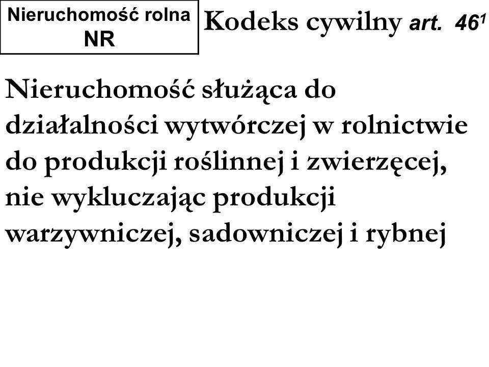 Nieruchomość rolna NR Kodeks cywilny art. 461.