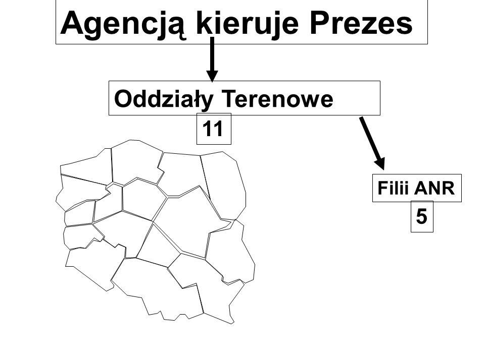 Agencją kieruje Prezes