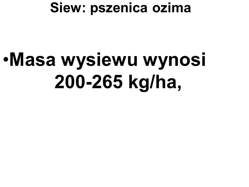 Masa wysiewu wynosi 200-265 kg/ha, Siew: pszenica ozima