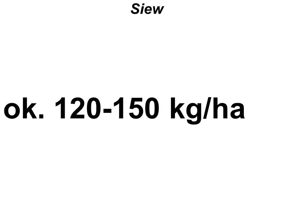 Siew ok. 120-150 kg/ha Z katalogu PLANOWANIE – z pliku Gospodarka Przestrzenna.