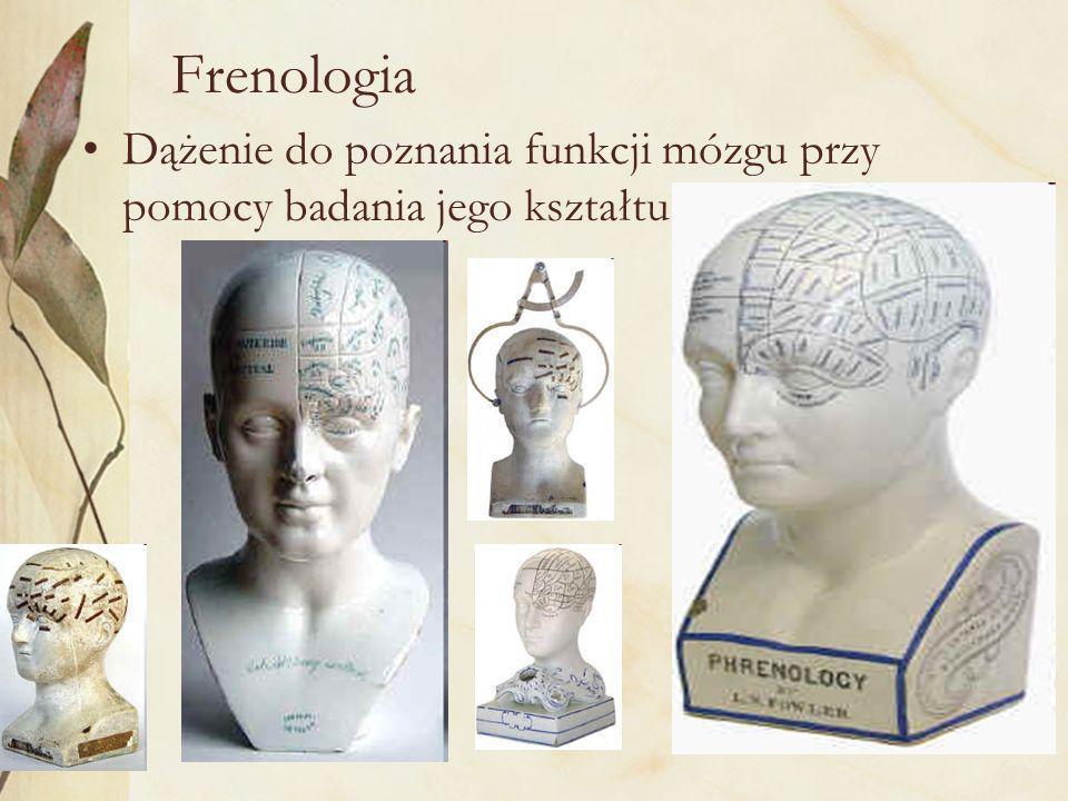 Frenologia Dążenie do poznania funkcji mózgu przy pomocy badania jego kształtu