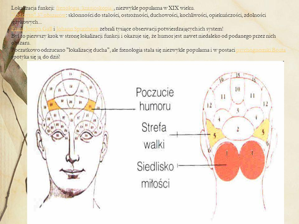 Lokalizacja funkcji: frenologia (kranioskopia), niezwykle popularna w XIX wieku.