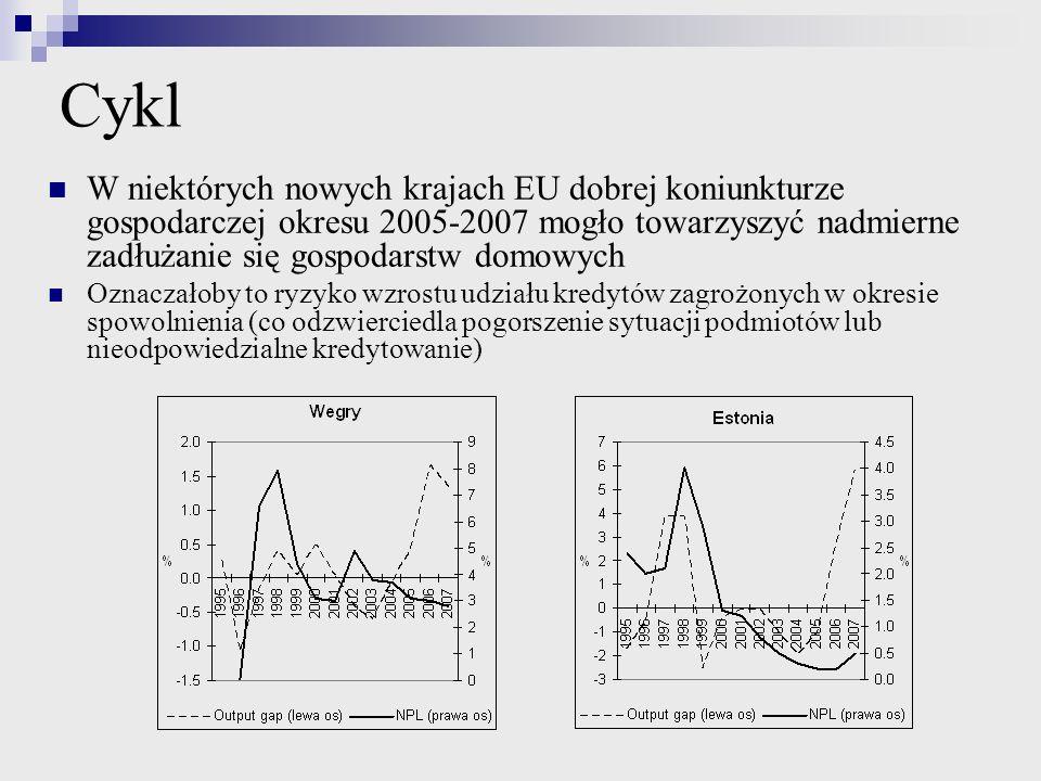 Cykl W niektórych nowych krajach EU dobrej koniunkturze gospodarczej okresu 2005-2007 mogło towarzyszyć nadmierne zadłużanie się gospodarstw domowych.