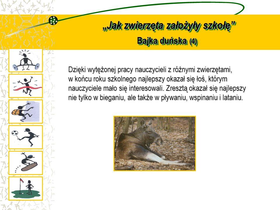 """""""Jak zwierzęta założyły szkołę Bajka duńska (4)"""