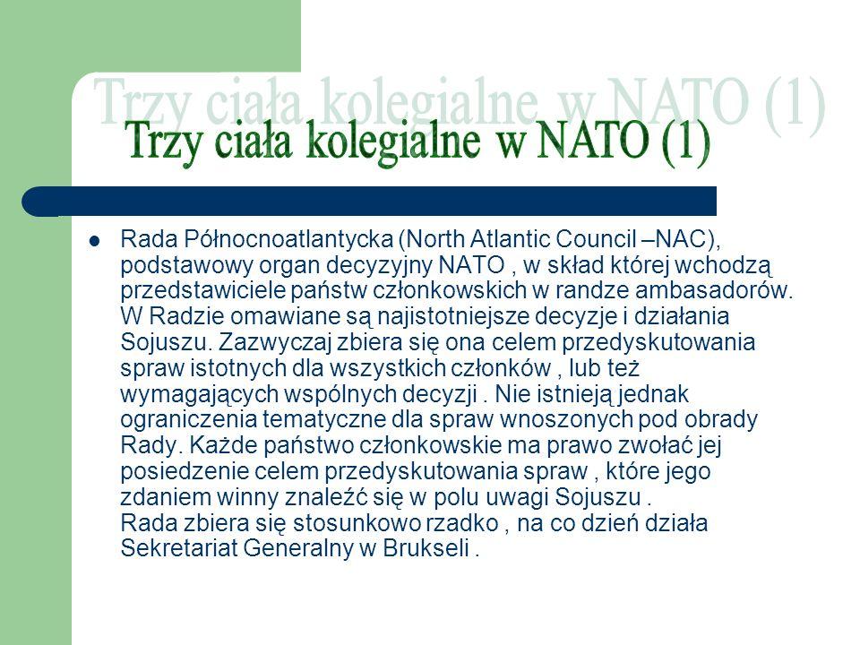 Trzy ciała kolegialne w NATO (1)