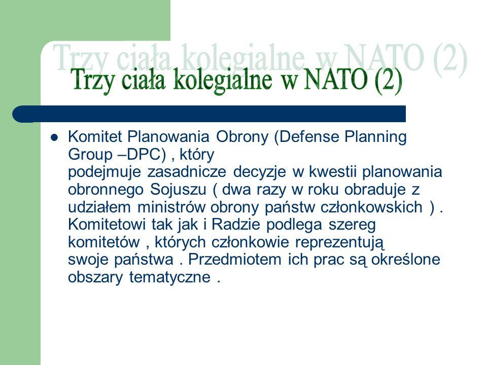 Trzy ciała kolegialne w NATO (2)