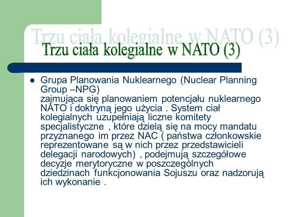 Trzu ciała kolegialne w NATO (3)