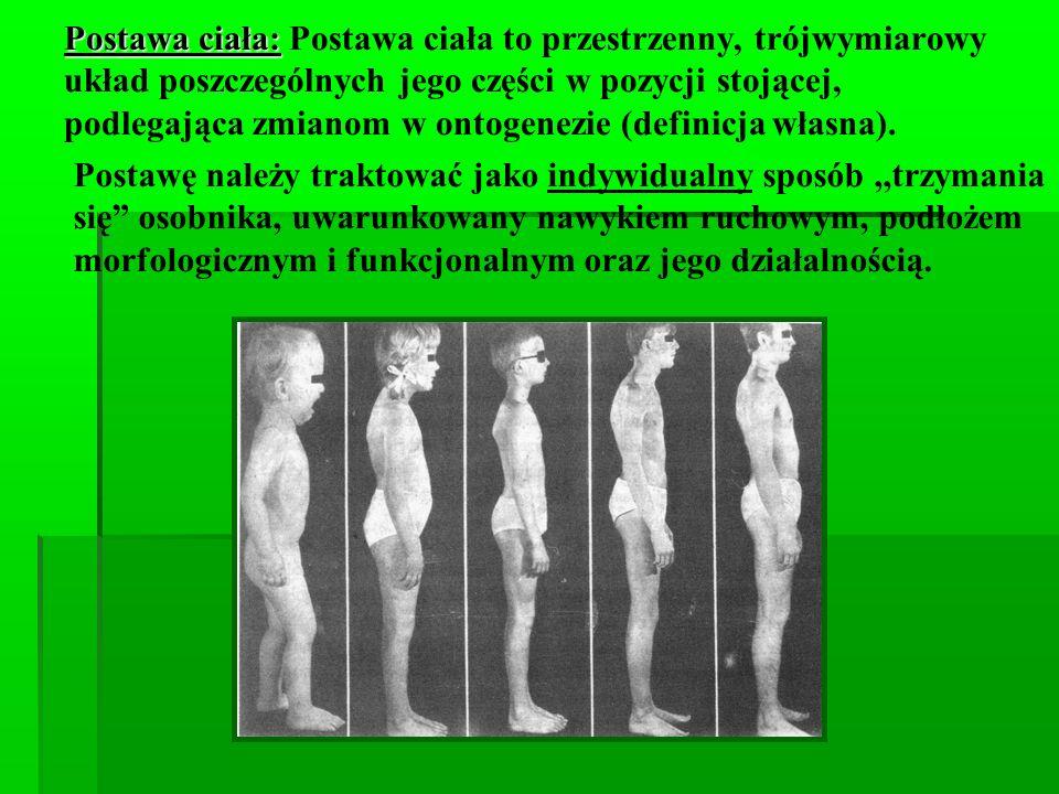 Postawa ciała: Postawa ciała to przestrzenny, trójwymiarowy układ poszczególnych jego części w pozycji stojącej, podlegająca zmianom w ontogenezie (definicja własna).