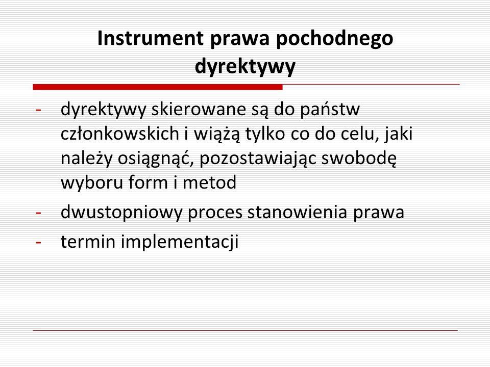 Instrument prawa pochodnego dyrektywy