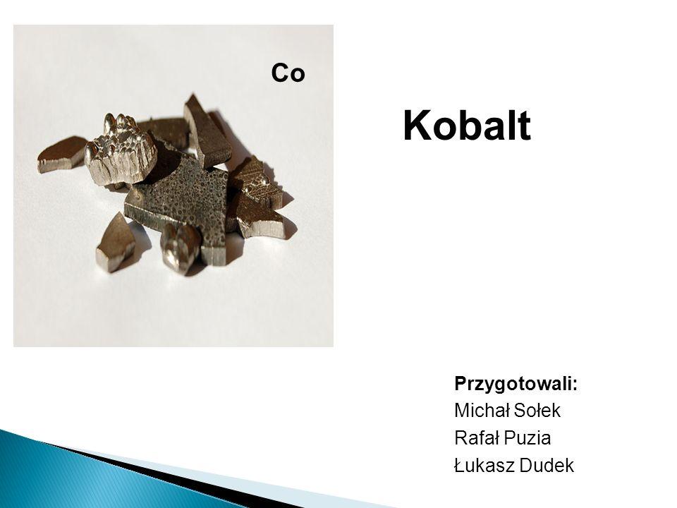 Przygotowali: Michał Sołek Rafał Puzia Łukasz Dudek