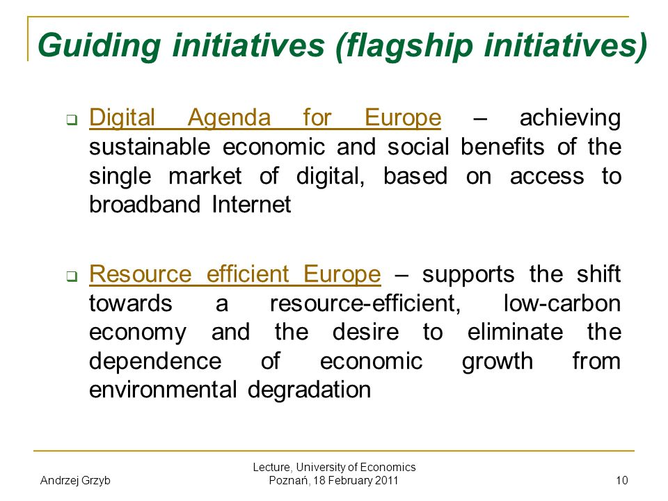 Guiding initiatives (flagship initiatives)