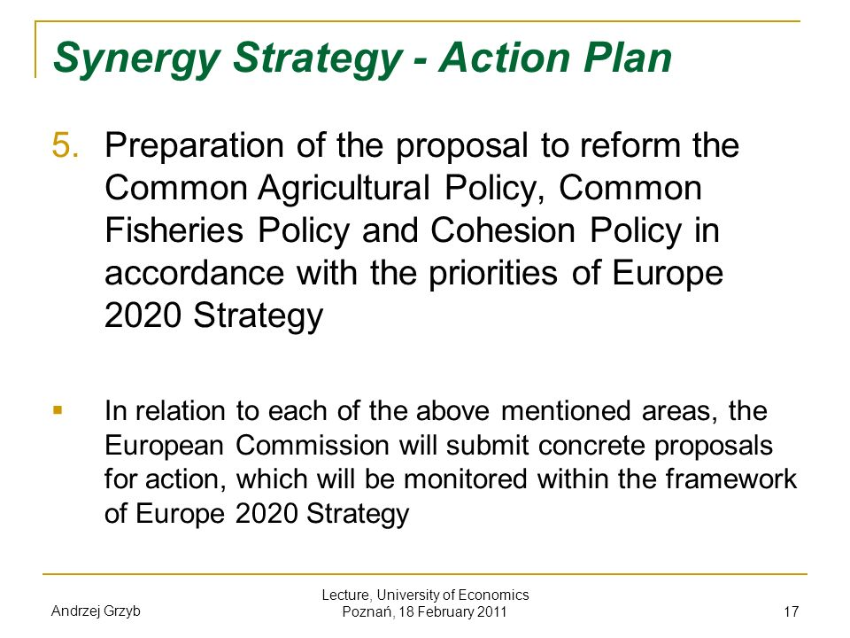 Synergy Strategy - Action Plan
