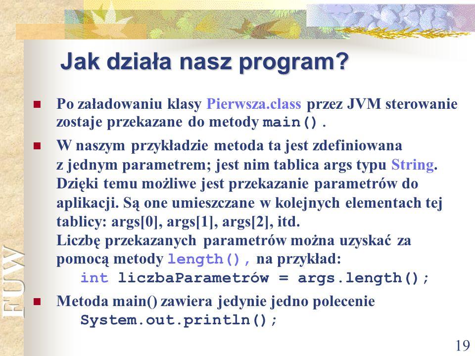 Jak działa nasz program