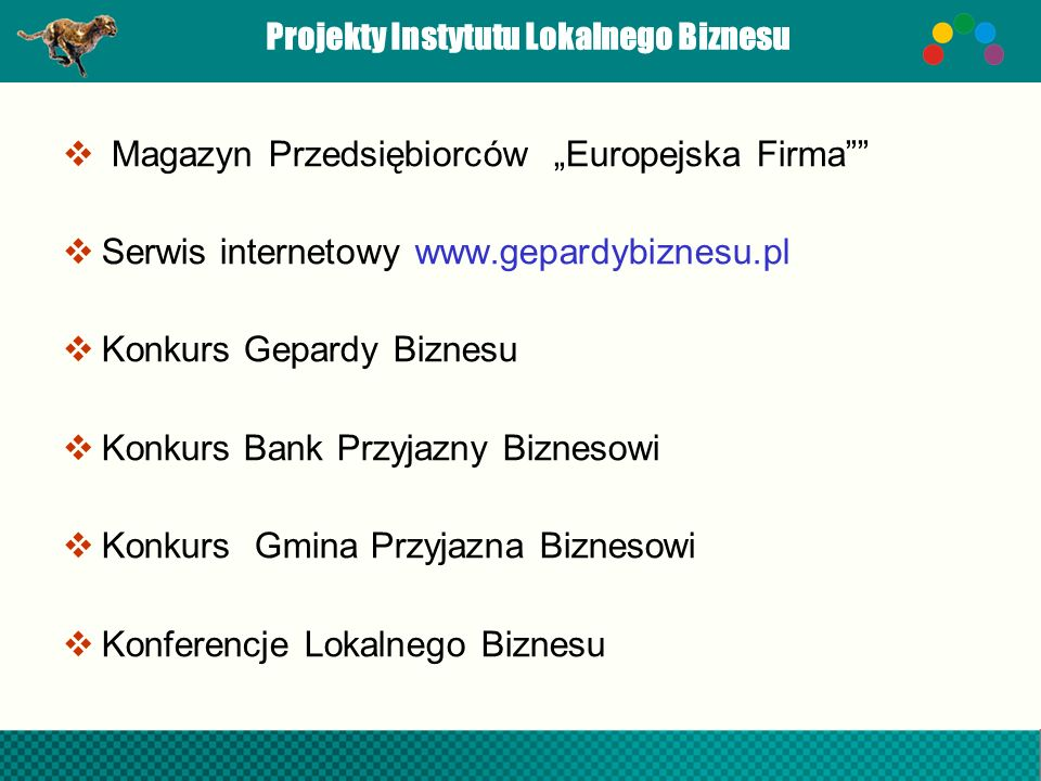 Projekty Instytutu Lokalnego Biznesu
