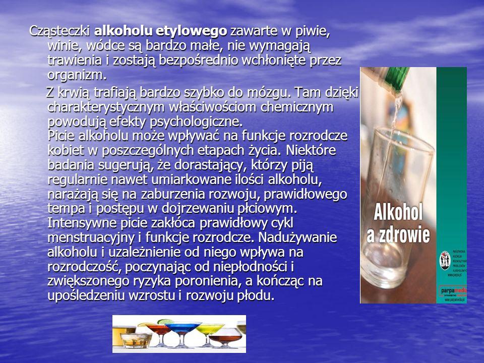 Cząsteczki alkoholu etylowego zawarte w piwie, winie, wódce są bardzo małe, nie wymagają trawienia i zostają bezpośrednio wchłonięte przez organizm.