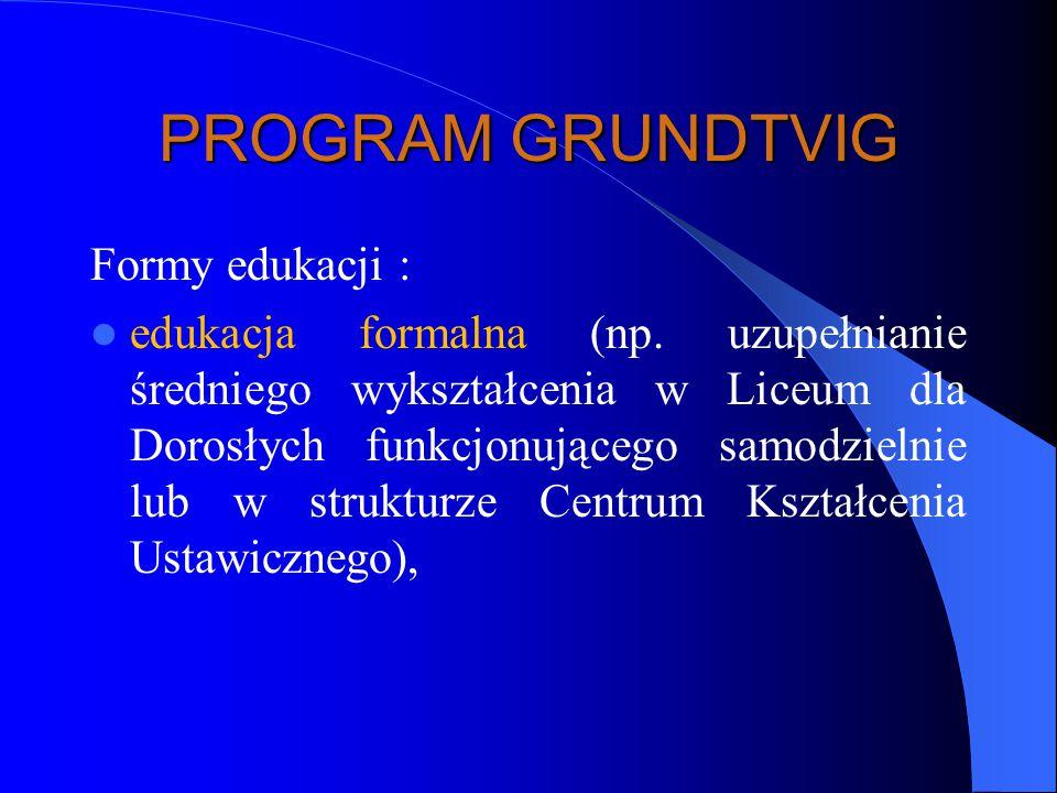 PROGRAM GRUNDTVIG Formy edukacji :