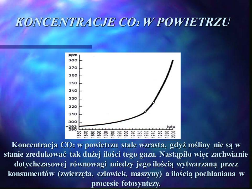 KONCENTRACJE CO2 W POWIETRZU