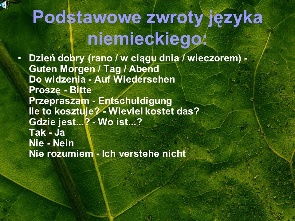 Podstawowe zwroty języka niemieckiego:
