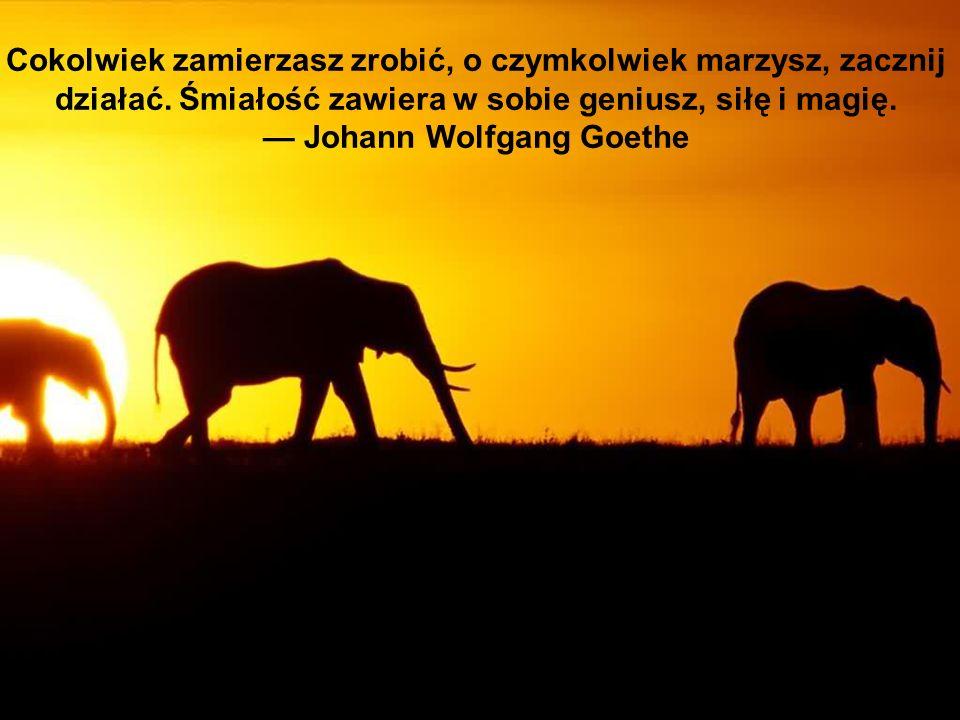 — Johann Wolfgang Goethe