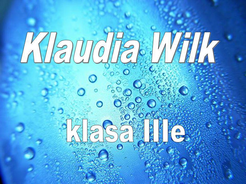 Klaudia Wilk klasa IIIe