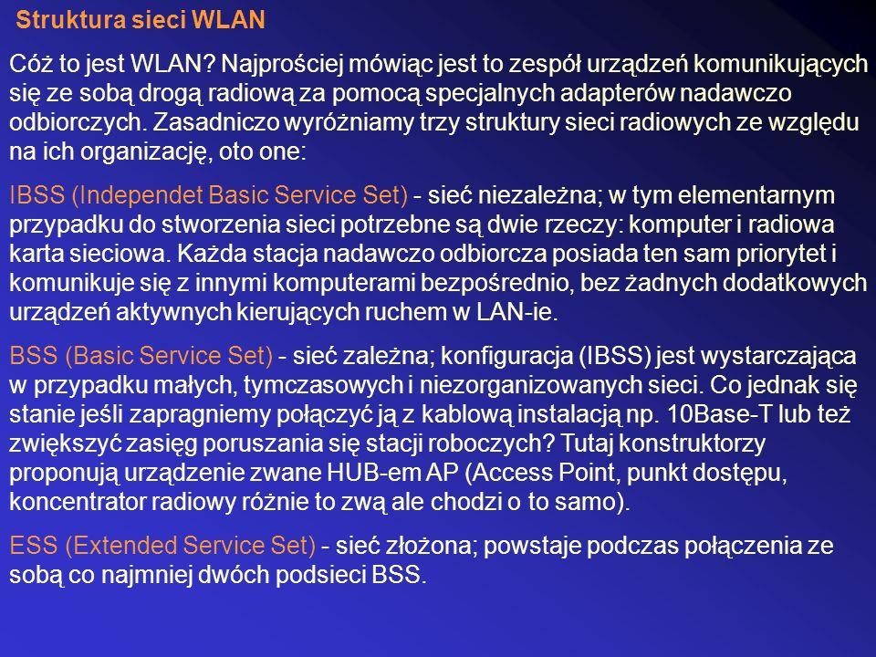 Struktura sieci WLAN