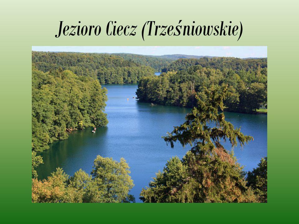 Jezioro Ciecz (Trześniowskie)