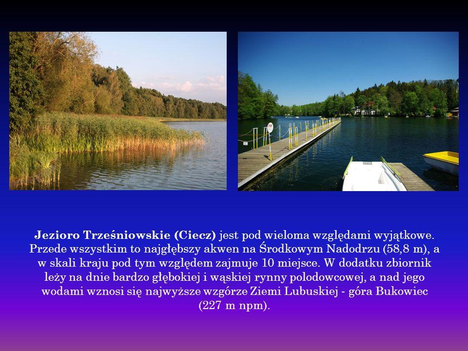 Jezioro Trześniowskie (Ciecz) jest pod wieloma względami wyjątkowe