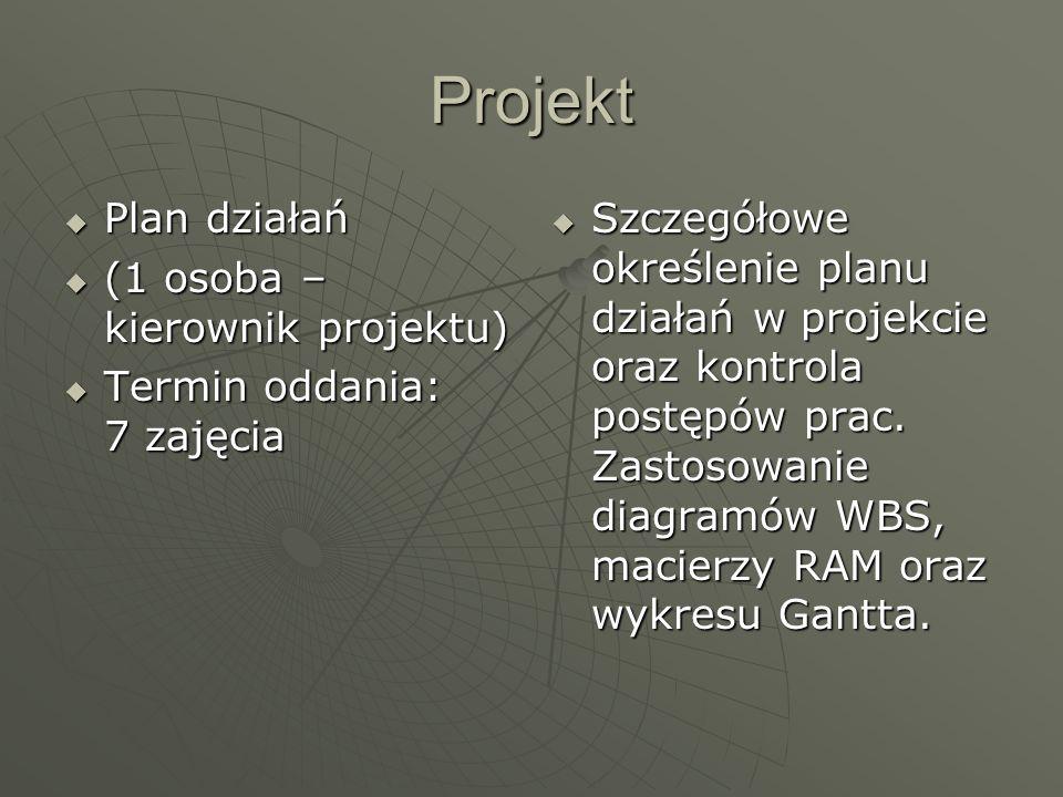 Projekt Plan działań (1 osoba – kierownik projektu)