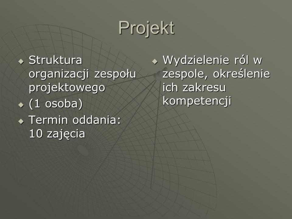 Projekt Struktura organizacji zespołu projektowego (1 osoba)