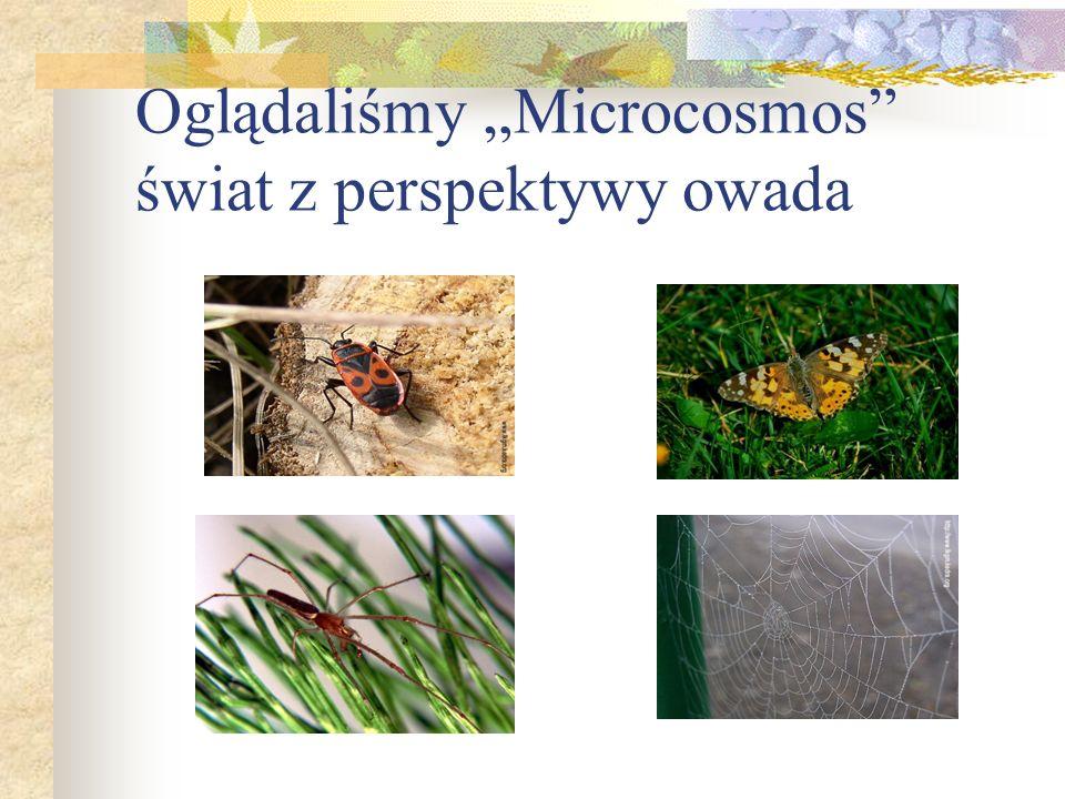 """Oglądaliśmy """"Microcosmos świat z perspektywy owada"""