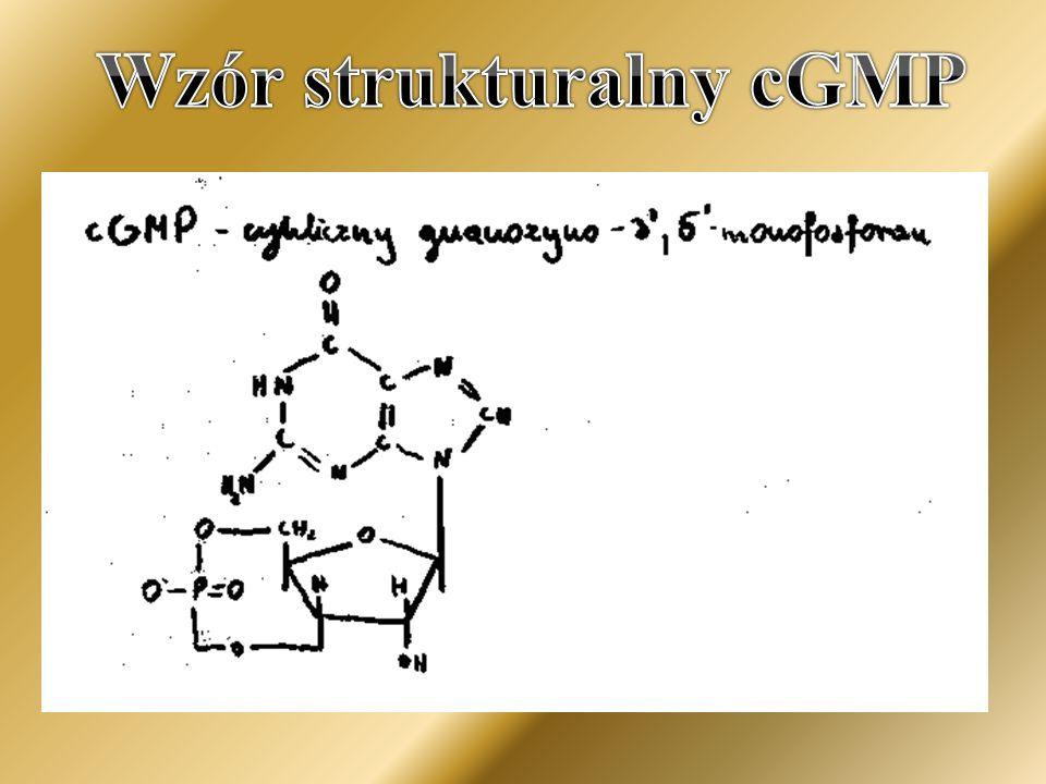 Wzór strukturalny cGMP