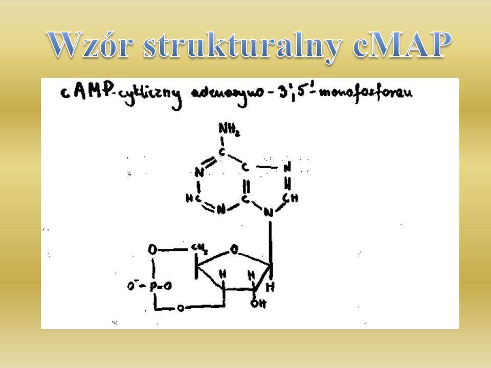 Wzór strukturalny cMAP
