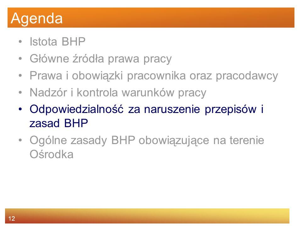 Agenda Istota BHP Główne źródła prawa pracy