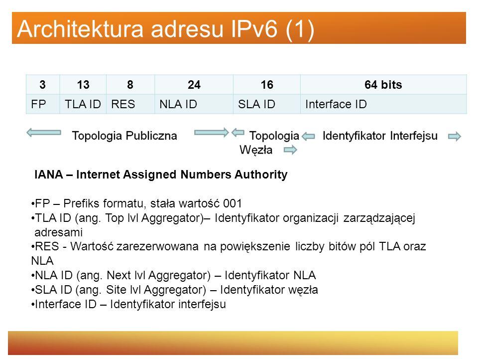 Architektura adresu IPv6 (1)