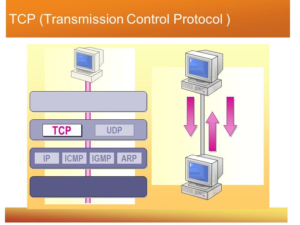 TCP (Transmission Control Protocol )