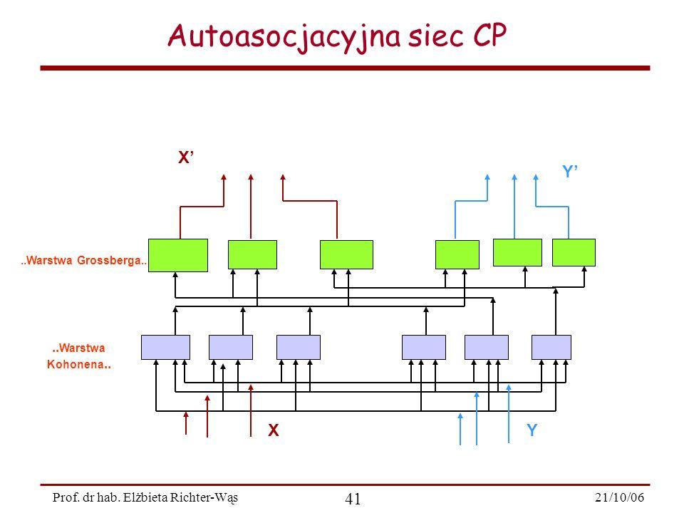 Autoasocjacyjna siec CP