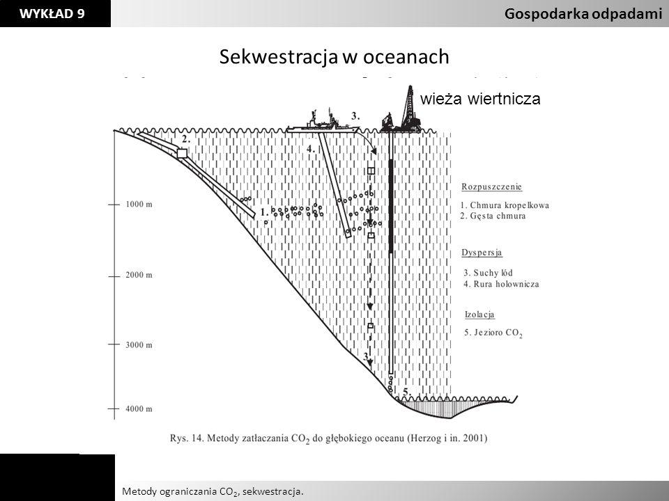Sekwestracja w oceanach
