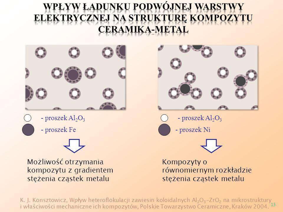 Wpływ ładunku podwójnej warstwy elektrycznej na strukturę kompozytu ceramika-metal