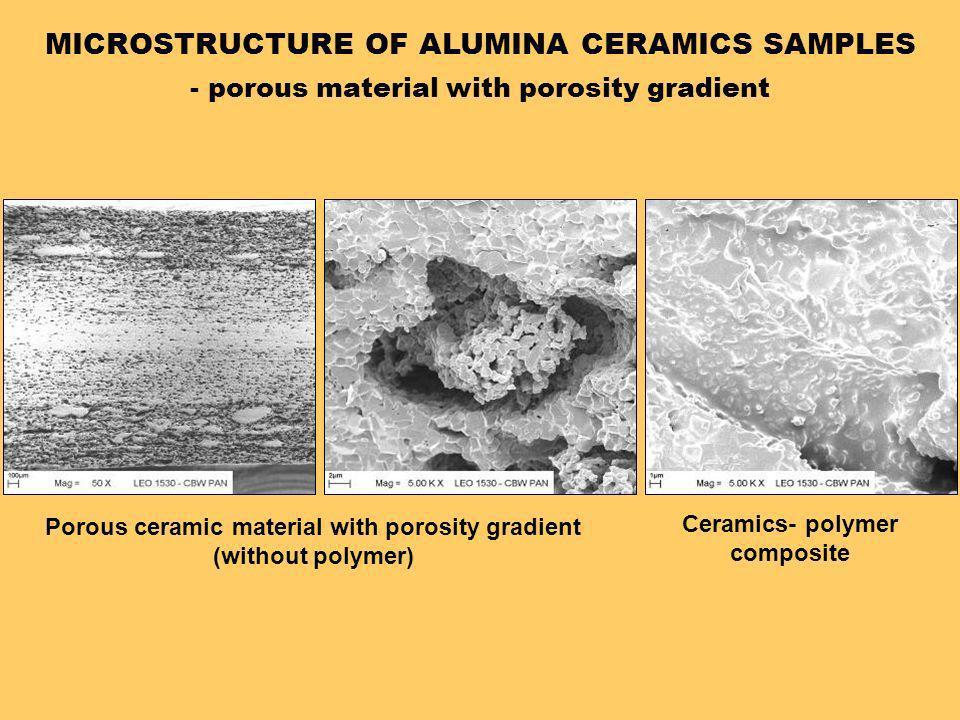 MICROSTRUCTURE OF ALUMINA CERAMICS SAMPLES
