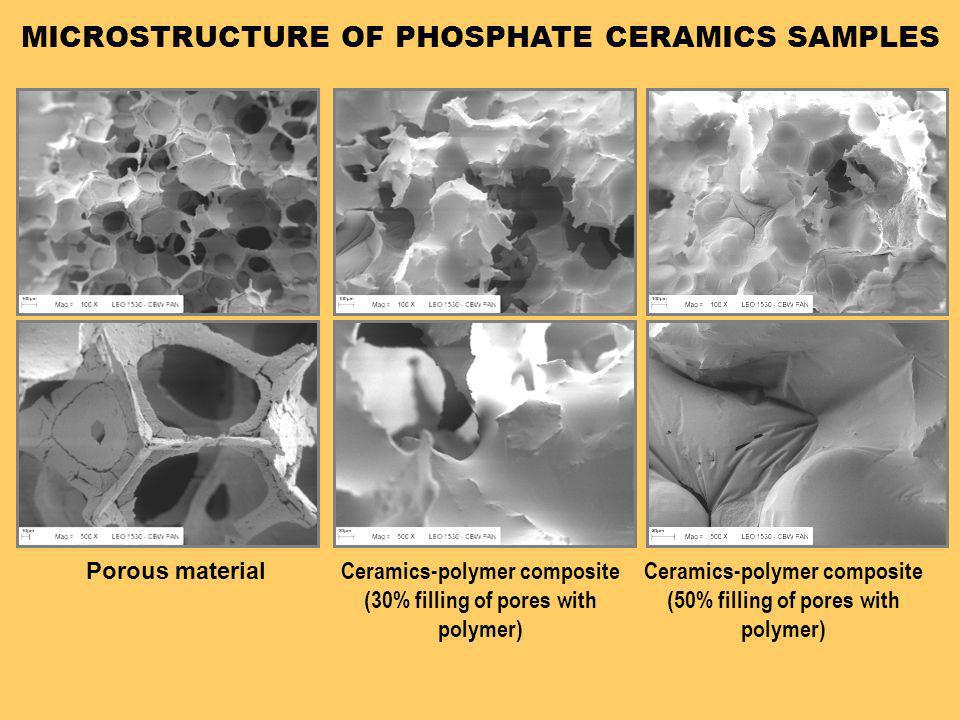 MICROSTRUCTURE OF PHOSPHATE CERAMICS SAMPLES
