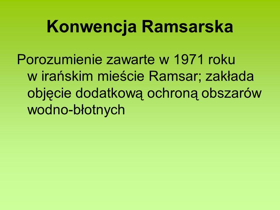 Konwencja Ramsarska Porozumienie zawarte w 1971 roku w irańskim mieście Ramsar; zakłada objęcie dodatkową ochroną obszarów wodno-błotnych.