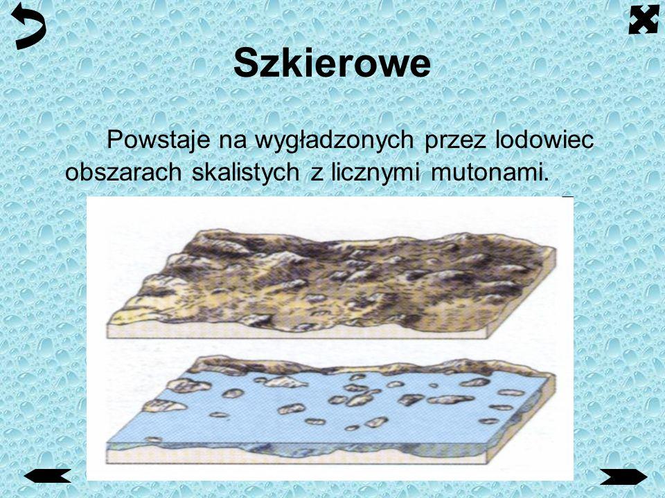 Szkierowe Powstaje na wygładzonych przez lodowiec obszarach skalistych z licznymi mutonami.