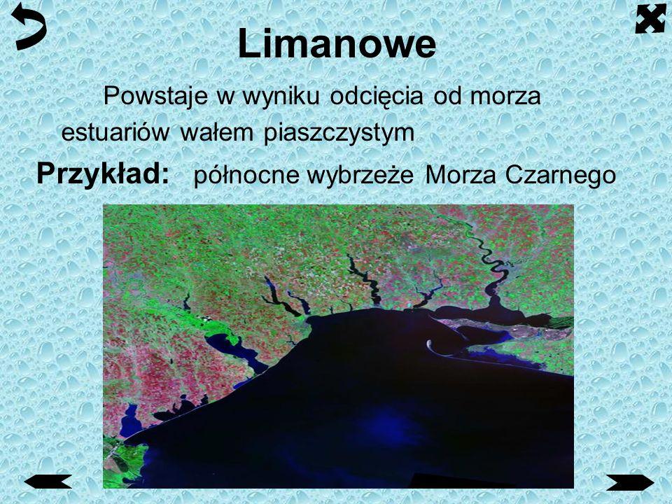 Limanowe Powstaje w wyniku odcięcia od morza estuariów wałem piaszczystym.