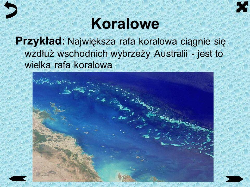 Koralowe Przykład: Największa rafa koralowa ciągnie się wzdłuż wschodnich wybrzeży Australii - jest to wielka rafa koralowa.
