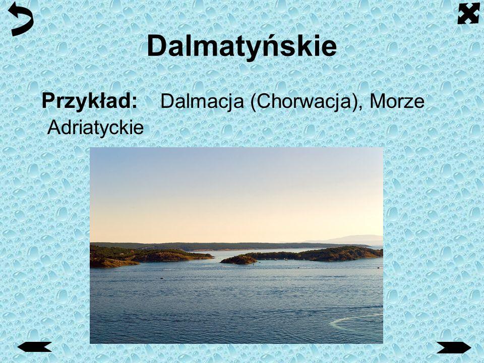 Dalmatyńskie Przykład: Dalmacja (Chorwacja), Morze Adriatyckie
