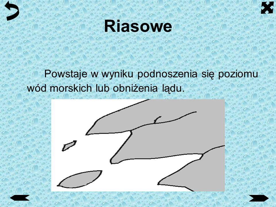 Riasowe Powstaje w wyniku podnoszenia się poziomu wód morskich lub obniżenia lądu.