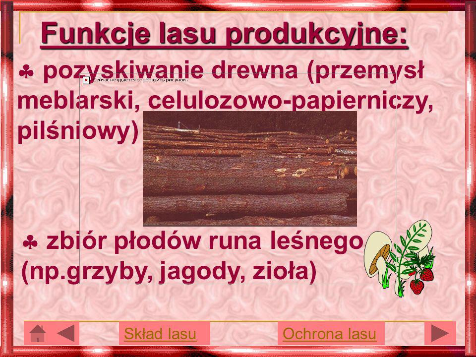 Funkcje lasu produkcyjne: