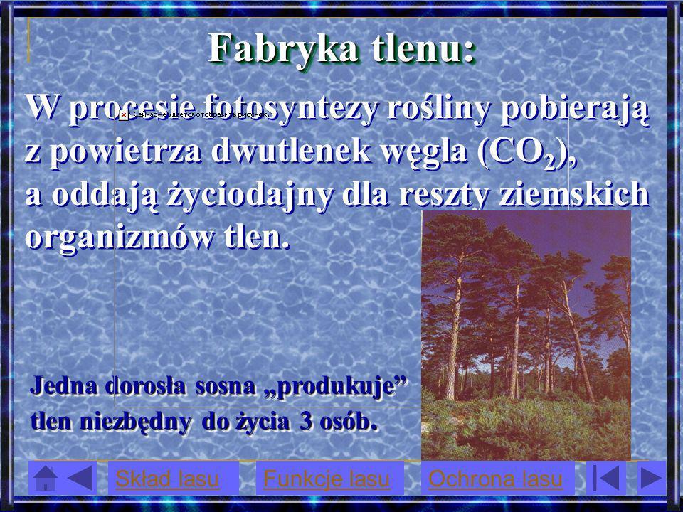 Fabryka tlenu: