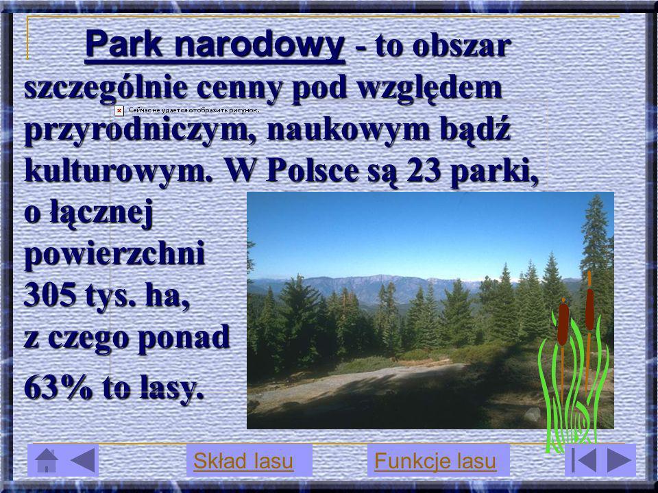 Park narodowy - to obszar szczególnie cenny pod względem przyrodniczym, naukowym bądź kulturowym. W Polsce są 23 parki, o łącznej powierzchni 305 tys. ha, z czego ponad 63% to lasy.